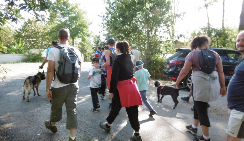 Walk with dogs on our 4-star campsite in Dordogne