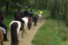 horse riding in Dordogne near campsite 4 stars